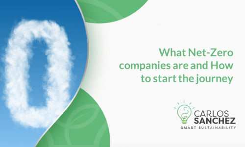 Net Zero Companies
