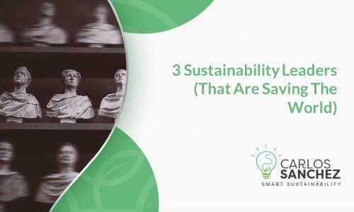 Sustainability Leaders